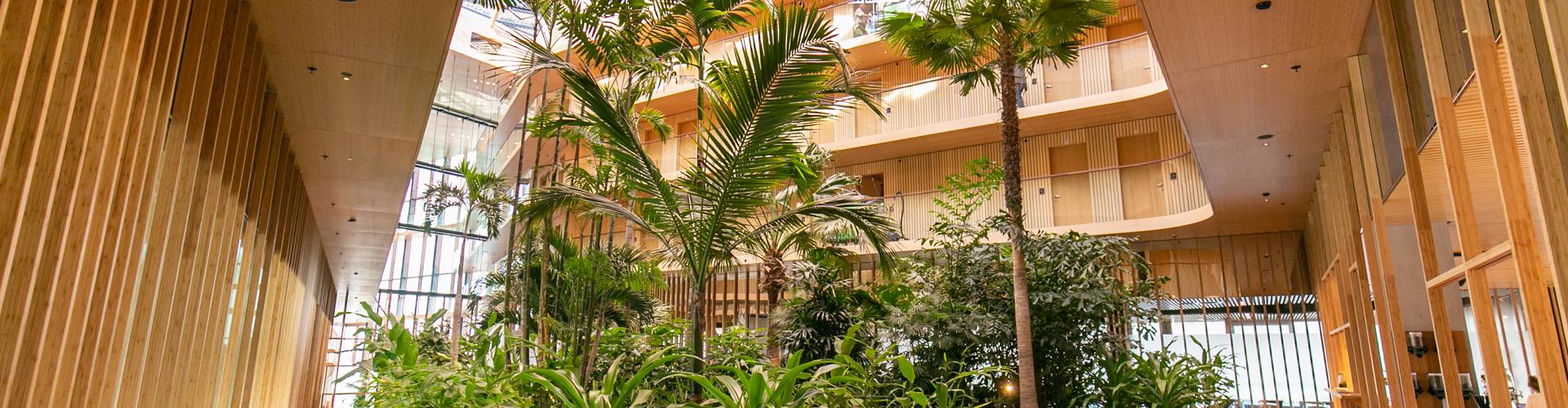 Hotel Jakarta Westcord Amsterdam Voorzien Van Licht Geluid En Beeld.